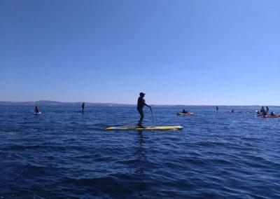 paddle3