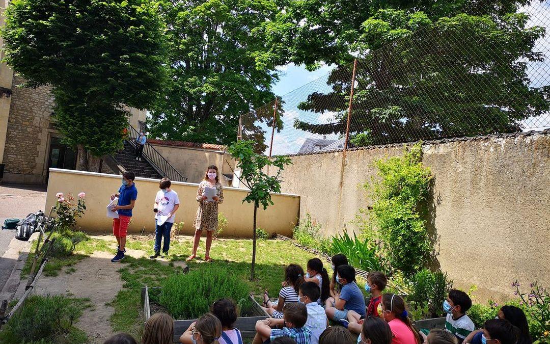 Des récitations au jardin pour une liaison primaire/collège